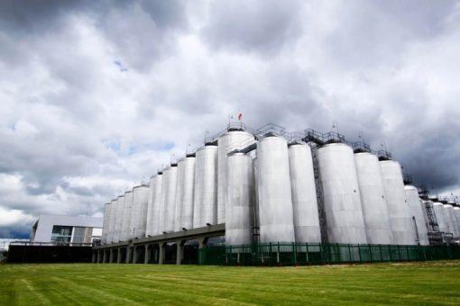Fabrica Cervecería Leona